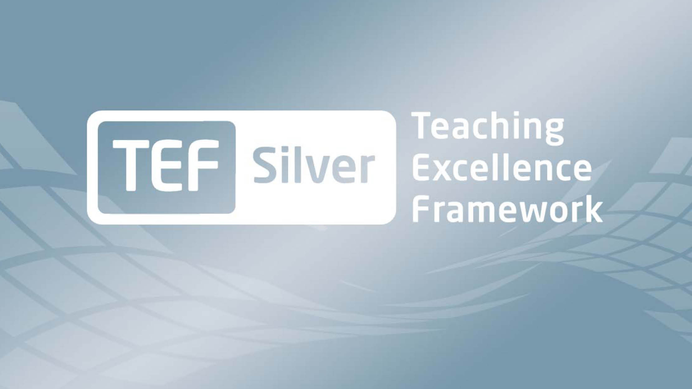 TEF Silver Award for MIHE